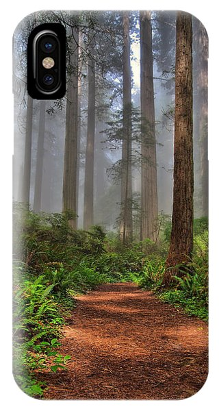 Michael iPhone Case - Path Thru The Redwoods by Michael  Ayers