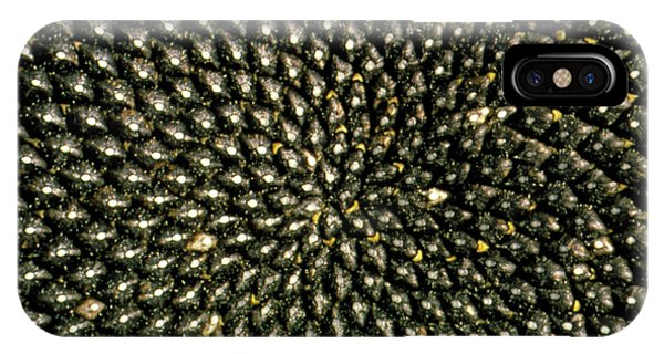 Sunflower Seeds iPhone Case - Pattern Of Seedhead Of Sunflower by George Bernard/science Photo Library