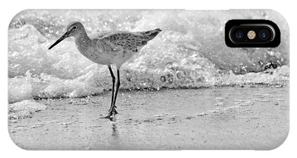 Sandpiper iPhone Case - Pause by Betsy Knapp