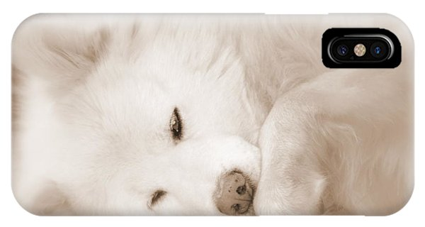 Pawsome IPhone Case