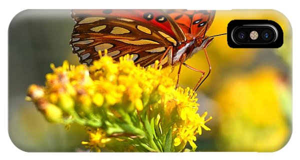 Agraulis Vanillae iPhone Case - Pea Island Butterfly by Adam Jewell