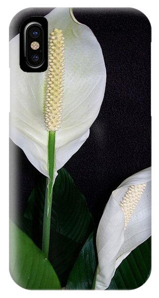 Peace Lilies IPhone Case