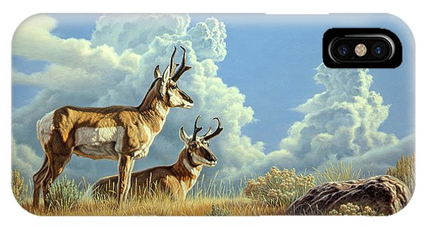 Cloudscape iPhone Case - Peaceful Afternoon by Paul Krapf