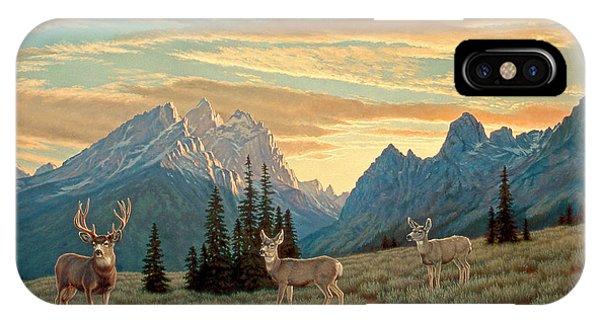 Mule Deer iPhone Case - Peaceful Evening - Tetons by Paul Krapf