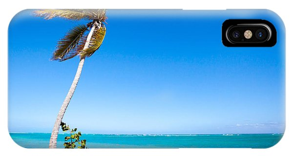 Peaceful Palm Tree IPhone Case