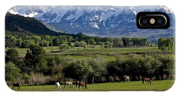 Peaceful Pastures IPhone Case
