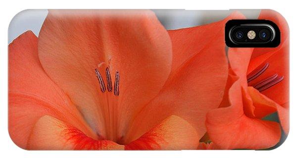 Peach Glads 2 IPhone Case