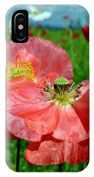 Peach Poppy Pods IPhone Case