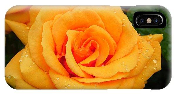 Peachy Rose IPhone Case