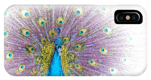 iPhone Case - Peacock by Holly Kempe
