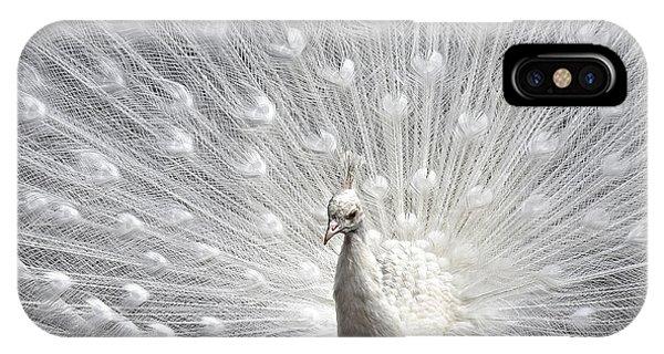 Peacock Pride IPhone Case