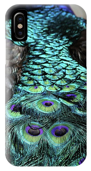 Peacock Trail IPhone Case