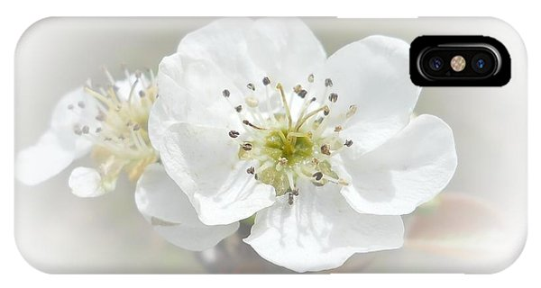 IPhone Case featuring the photograph Pear Blossom by Judy Hall-Folde