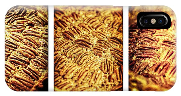 Pecan Pie Nostalgia Triptych By Lincoln Rogers IPhone Case