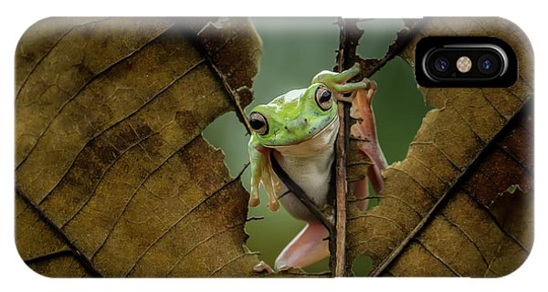 Macro iPhone Case - Peek A Boo by Andreas Karyadi