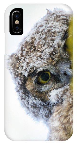 Peek A Boo Baby Owl IPhone Case