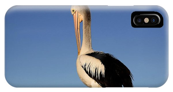 Pelican Alone IPhone Case