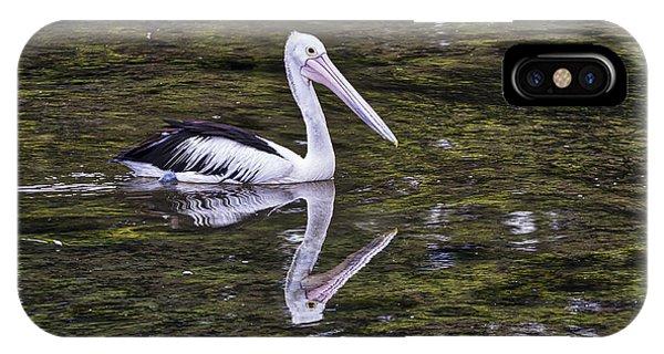 Pelican - Australia IPhone Case