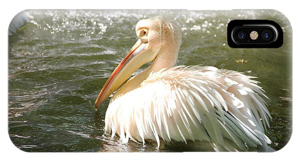 Pelican Bath Time IPhone Case