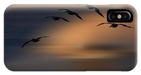 Pelican Blur  73a2324 IPhone Case