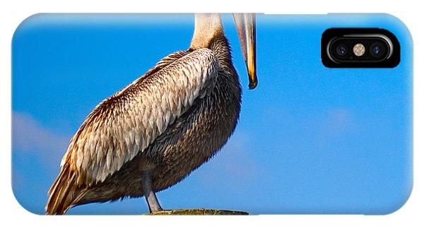 Pelican IPhone Case