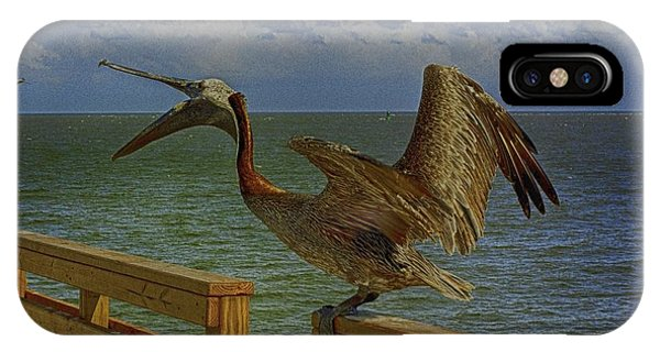 Pelican Eating IPhone Case