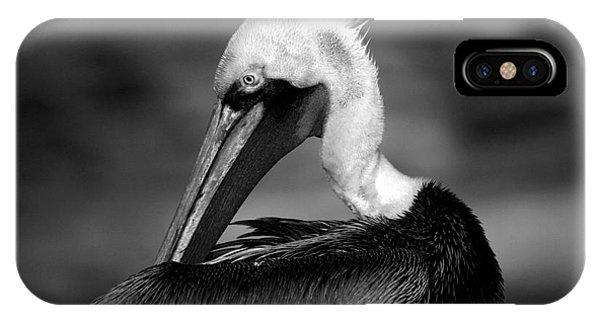 Pelican In Waves IPhone Case
