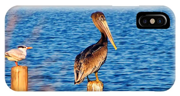 Pelican On A Pole IPhone Case