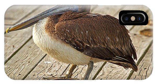 Pelican On The Dock II IPhone Case