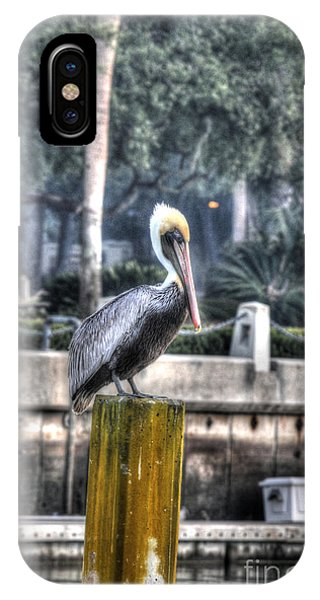 Pelican On Water Post Phone Case by Dan Friend