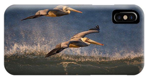 Pelican Pair  73a2315 IPhone Case