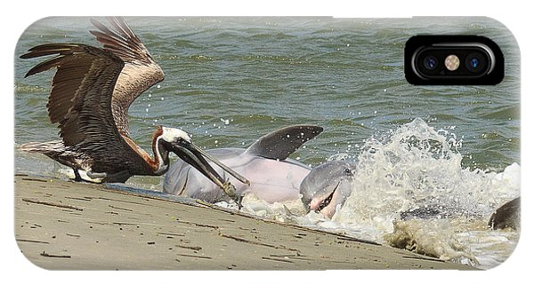 Pelican Steals The Fish IPhone Case