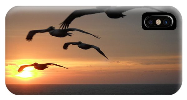 IPhone Case featuring the photograph Pelican Sun Up by Laurie Lundquist