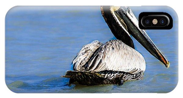 Pelican Swimming IPhone Case
