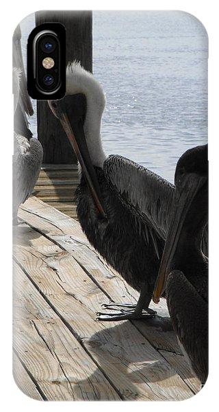 Pelicans Dockside IPhone Case