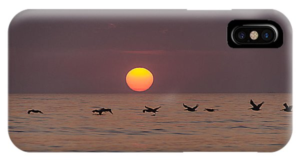 Pelicans In A Row Phone Case by  Island Sunrise and Sunsets Pieter Jordaan