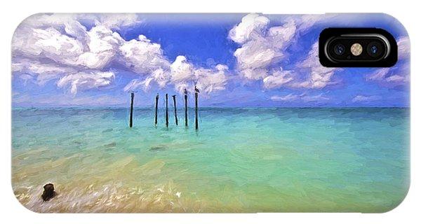 Pelicans Of Aruba IPhone Case