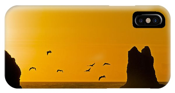 Pelicans On The Wing II IPhone Case