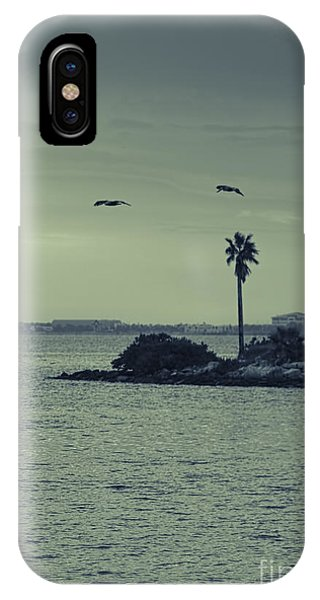Pelicants And Palm IPhone Case