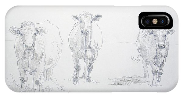 Pencil Drawing Of Three Cows IPhone Case