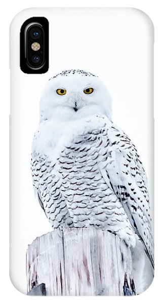 Penetrating Stare IPhone Case