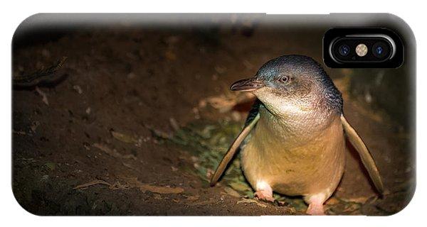 Penguins Phone Case by George Lim