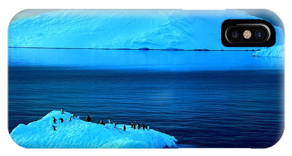 Penguins On Iceberg IPhone Case