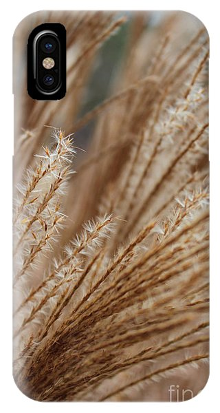 Pennisetum IPhone Case