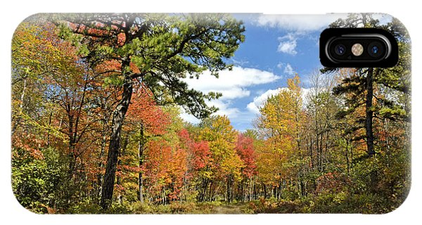 Pennsylvania Forest In Autumn Pocono Mountains IPhone Case