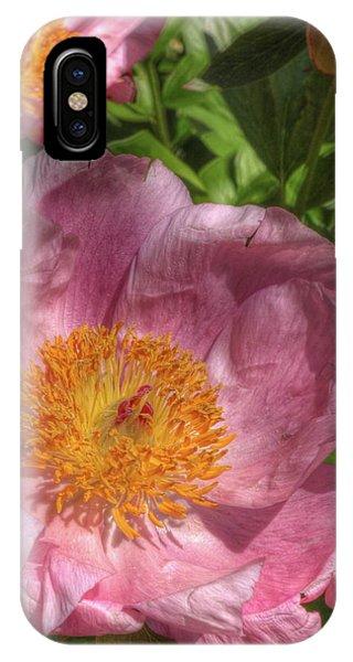 Peonies Aglow IPhone Case