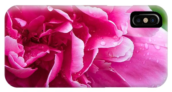 Peony After The Rain IPhone Case