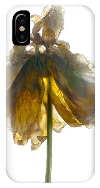 Floral Arrangement iPhone Case - Peony Stand White by Julia McLemore