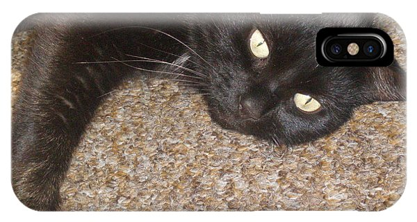 Pepsi Black Cat Found The Hot Spot IPhone Case