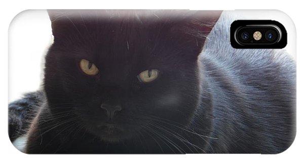 Pepsi The Lucky Black Cat IPhone Case